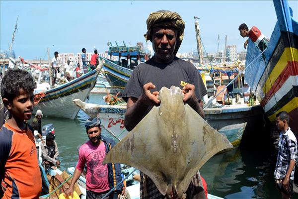 صيادو الحديدة .. من مهنة الصيد إلى رصيف البطالة