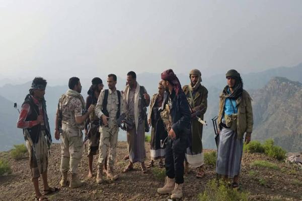 المقاومة تؤمن مواقع استراتيجية جنوب تعز لمنع سيطرة الحوثيين عليها