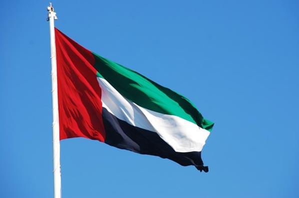 الإمارات : قدمنا 1.20 مليار دولار لإغاثة اليمن