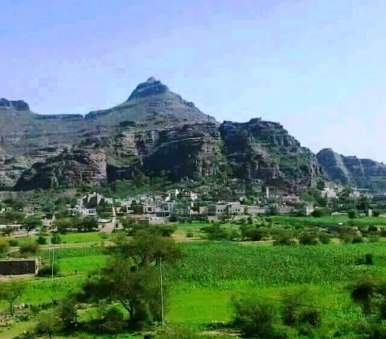 """الضالع: مليشيات الحوثي والمخلوع تقصف قرى """"مريس"""" بشكل عشوائي"""