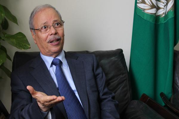 الجامعة العربية ترحب بإعلان كيري وتؤيد حلا بناء على المرجعيات الثلاث