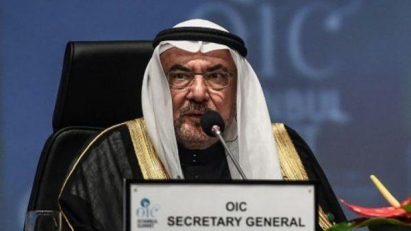 """الأمين العام لمنظمة التعاون الإسلامي يستقيل إثر تصريحات """"مسيئة"""" للسيسي"""