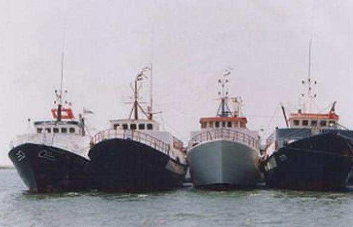 قوات خفر السواحل بالمهرة تحتجز أربع سفن صيد مصرية