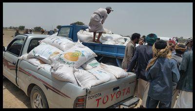 """منظمة (الفاو) توزع بذور القمح والشعير لمزارعي """"بني الحارث"""""""