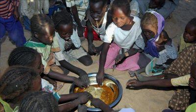 الأمم المتحدة: أكثر من 800 مليون شخص يعانون الجوع بالعالم