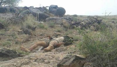 """البيضاء: مصرع تسعة حوثيين وإحراق طقمين خلال تصدي المقاومة لهجوم في """"قيفة"""""""