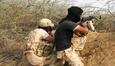 """مصرع 14 من مليشيا الحوثي أثناء محاولتهم انتشال جثة قيادي ميداني بـ""""ميدي"""""""