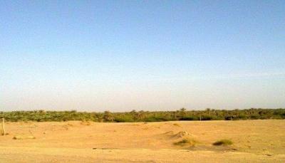 الحديدة: قوات الجيش تحرر مواقع جديدة في مديريتي التحتيا وبيت الفقية