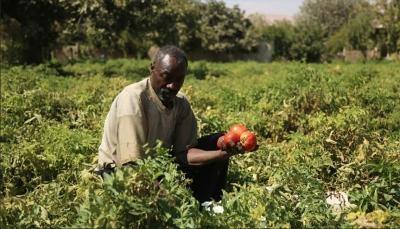 السودان: جهات تعمل على تخريب اقتصادنا عبر ترويج الشائعات