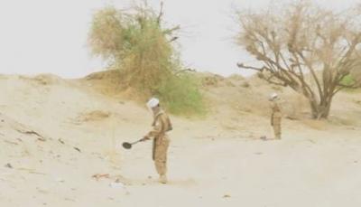 """مقتل أحد مهندسي برنامج """"مسام"""" أثناء عملية انتزاع الألغام بشبوة"""