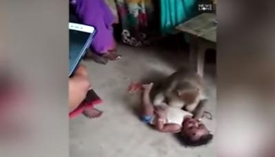 قرد يخطف طفلا من والديه ويهدد من يقترب منه! (فيديو)