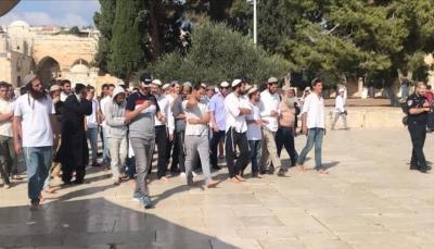 أكثر من 500 مستوطن اقتحموا المسجد الأقصى اليوم