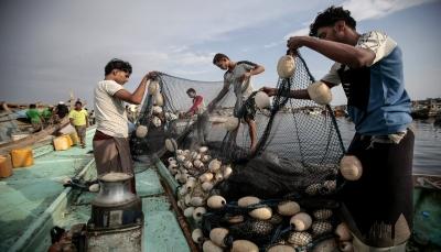 """""""اسوشيتد برس"""" تسلط الضوء على معاناة الصيادين اليمنيين جراء استمرار الحرب (ترجمة خاصة)"""