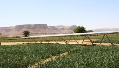حضرموت: في خطوة للتخفيف على المزارعين.. توفير السماد بسعر أقل بنسبة 40%