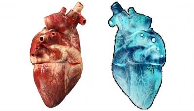 """10 علامات تدل على اقتراب """"النوبة القلبية"""".. ماهي؟"""