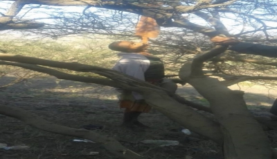 """انتحار مواطن في """"إب"""" شنقاً نتيجة الظروف الاقتصادية (صورة)"""