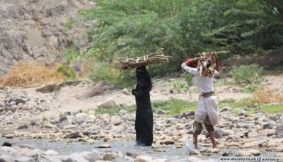 """في معاناة يومية.. """"الاحتطاب"""" يودي بحياة النساء اليمنيات في الجبال الشاهقة"""