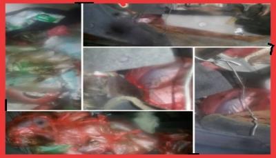 البيضاء: قوات الأمن تضبط 114 كيلوجرام من المخدرات كانت في طريقها للحوثيين