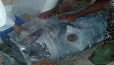 البيضاء: قوات الأمن تضبط شحنة حشيش كانت في طريقها للمليشيا الحوثية