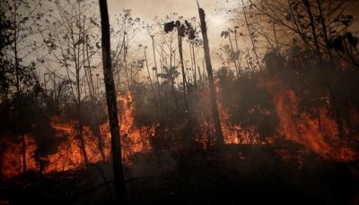البرازيل تحرّك جيشها لمواجهة حرائق غابات الأمازون بعد تهديد أوروبي