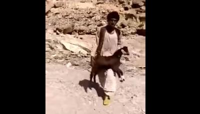"""سوداني يرفض تقاضي ثمن """"تيس"""" من رجل أعمال سعودي فكافأة بمنزل (فيديو)"""