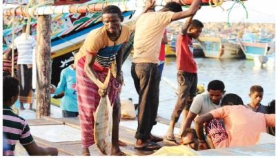 منحة يابانية لدعم الصيادين في اليمن بـ 3.5 مليون دولار