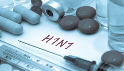 إب: تسجيل أول حالة إصابة بأنفلونزا الخنازير  وسط تكتم سلطات الحوثيين