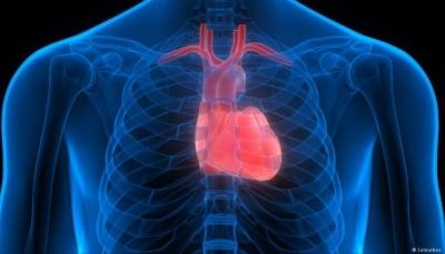 تعرف على أربع علامات تنذر بأزمة قلبية