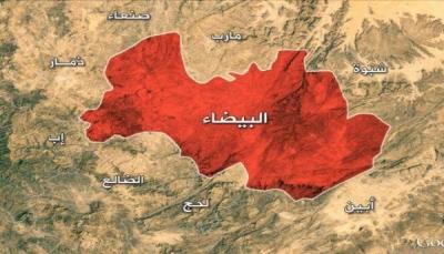 البيضاء: قتلى وجرحى حوثيين بنيران مقاومة آل حميقان بالزاهر