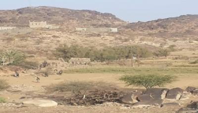 البيضاء: قوات الجيش تحبط هجوماً حوثياً وتأسر عدد من المهاجمين (صور)