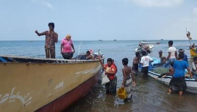 """اليمن: الثروة السمكية تعلن فتح موسم صيد """"الحبار"""" وإغلاق صيد اسماك """"القرش"""""""