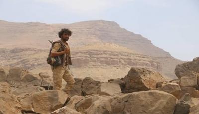 """البيضاء.. الجيش الوطني يؤكد استعادته مواقع في """"قانية"""" وقتل العشرات من المغرر بهم"""