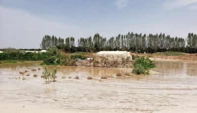 الحكومة تعلن عزمها صرف تعويضات للمتضررين بسبب الأمطار السيول