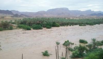 السفير البريطاني قلق من الفيضانات في اليمن وتركيا تعزي ضحايا السيول بمأرب
