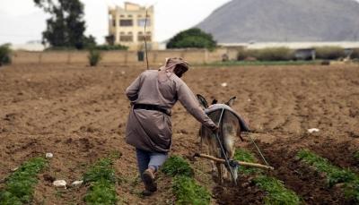 مزارعو اليمن يشكون مخلفات الأعاصير وضعف المساعدات