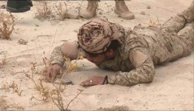 مسؤول: مناطق واسعة في اليمن ملوثة بالألغام التي زرعتها مليشيات الحوثي