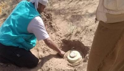 القوات الحكومية تعلن تفكيك عشرات الألغام والعبوات زرعتها المليشيات جنوبي الحديدة