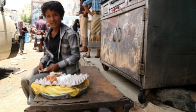 ما وراء الارتفاع الجنوني لأسعار البيض في الأسواق اليمنية؟