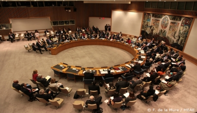 """وزراء خارجية عرب ينتقدون """"شلل"""" مجلس الأمن إزاء القضية الفلسطينية"""