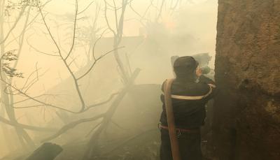 ارتفاع ضحايا حرائق الجزائر إلى 65 قتيلاً النيران تواصل التهام الغابات في 16 ولاية