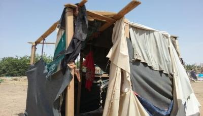 البيضاء.. 800 أسرة نازحة في العراء يعيشون ظروفاً صعبة