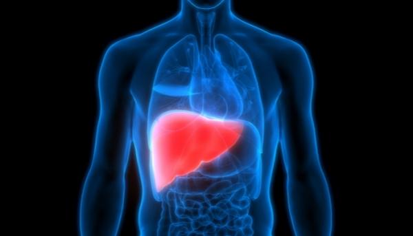ثلاثة أعراض خفية قد تشير إلى مشكلات في الكبد