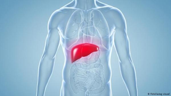 تعرف على الأطعمة التي تعمل على طرد السموم من الكبد