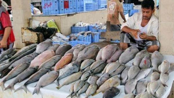 يمنيون جوعي يعزون ارتفاع أسعار الأسماك إلى التصدير