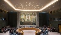 الحكومة اليمنية تسلم مجلس الأمن رسالة حول مطالبها من التحالف (تفاصيل)