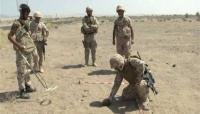 """تعز: مقاتلات التحالف تدمر آليات عسكرية في الصلو وانتزاع الغام من جبهة """"جرداد"""""""