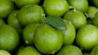دراسة حديثة تكشف فوائد الليمون في علاج السرطان