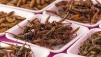 """دراسة تكشف: أكل الحشرات """"يحميك"""" من أحد أخطر أمراض العصر"""