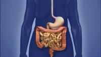 تعرف على الأعراض الرئيسية لسرطان الأمعاء