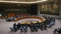 روسيا والصين تستخدمان حق النقض ضد مشروع قرار لوقف النار في إدلب
